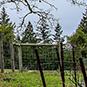 2012 Estate Chardonnay